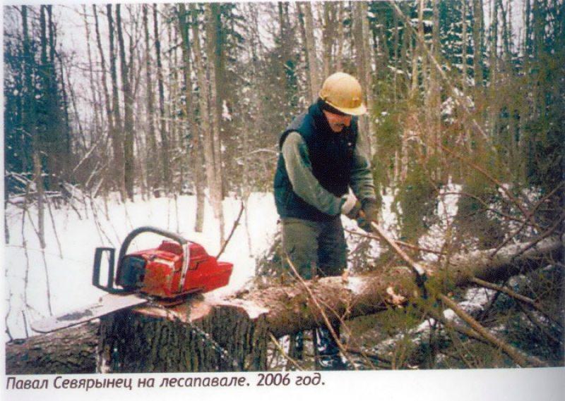 Павал Севярынец на лесапавале.