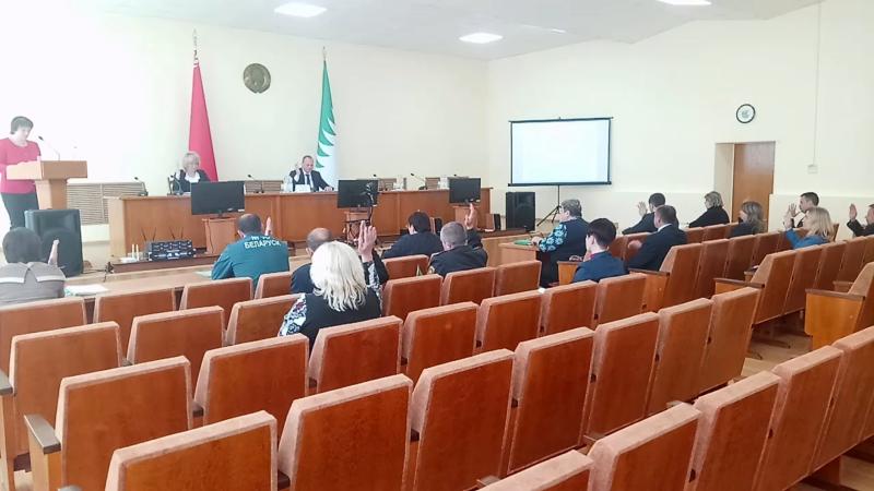 Формирование Хойникской районной избирательной комиссии. Скрин-шот из онлайн-трансляции